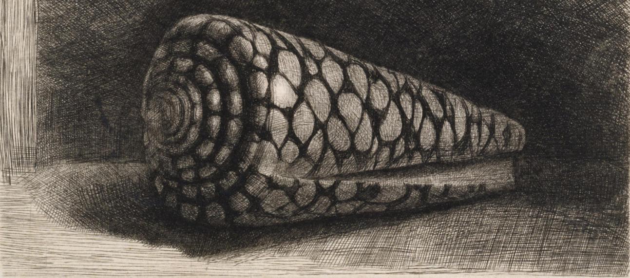 Ashmolean Touring Exhibitions - Rembrandt