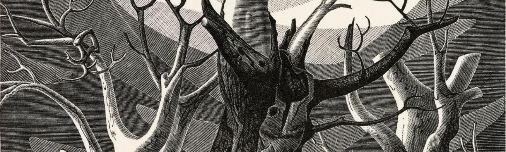 Monica Poole, Dead Trees Sheppey