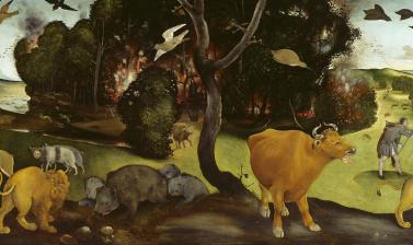The Forest Fire by Piero di Cosimo ITALIAN RENAISSANCE at the Ashmolean Museum