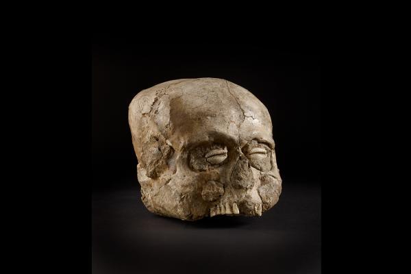 Jericho Skull Around 7000BC