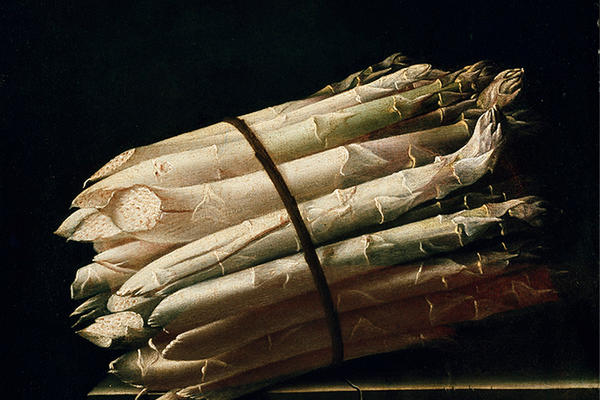 Still life painting of Asparagus