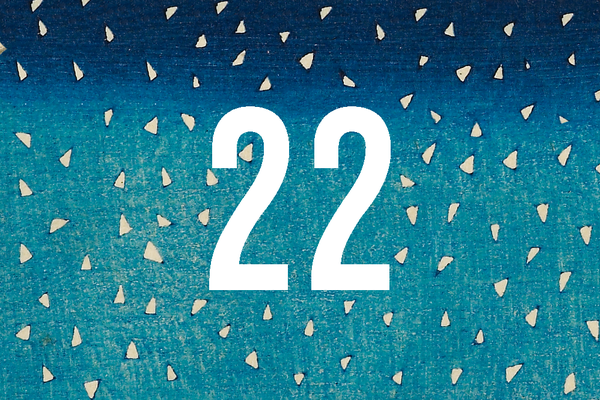 Advent Calendar Closed Door 22