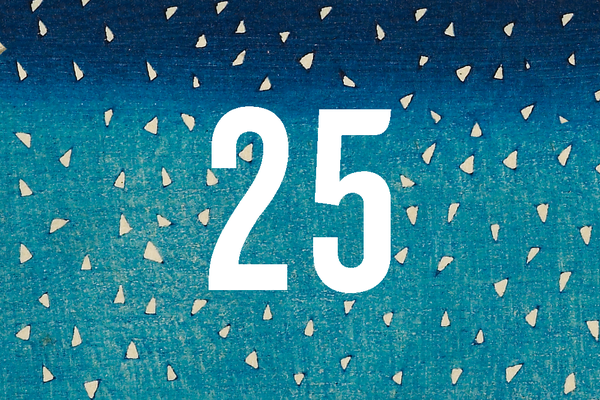 Advent Calendar Closed Door 25