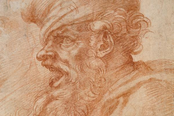 Head of a Bearded Man shouting by Michelangelo Deatail