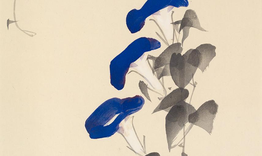 Spray of 'morning glory' by Takeuchi Seihō