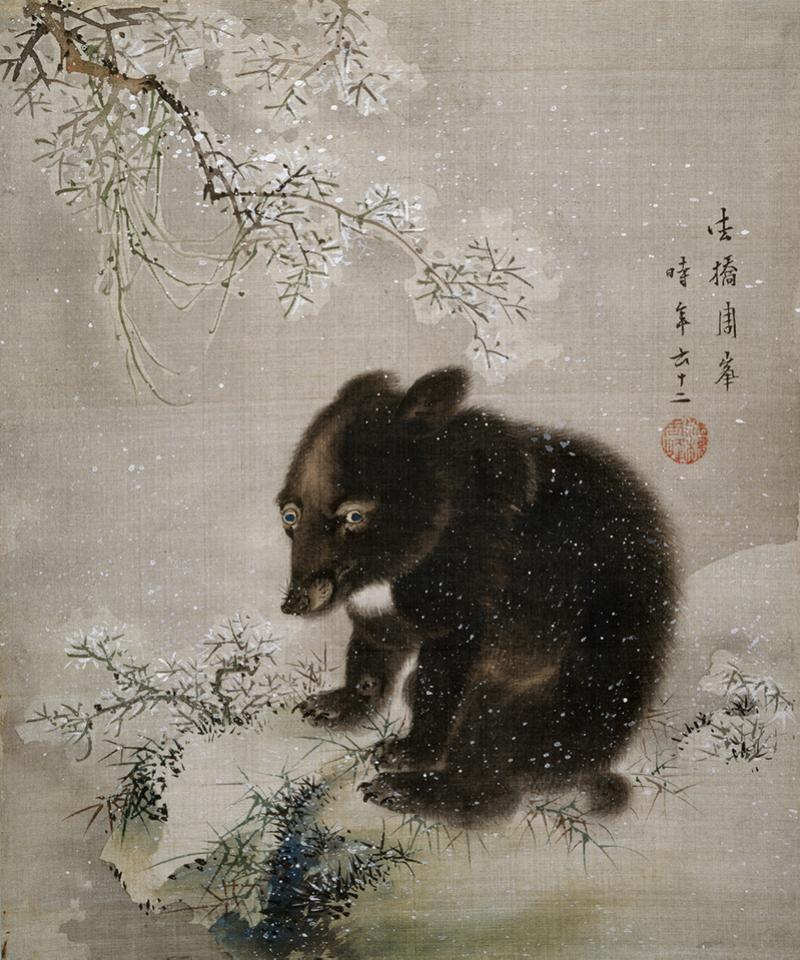 EA1964.94.F Black Bear cub in snow